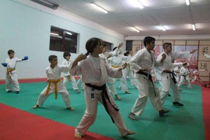 Karate (135)