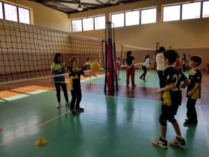 2016_05_03 Torneo Minivolley (8)