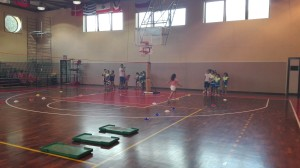 Festa Volley 2016 (2)