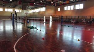Festa Volley 2016 (4)
