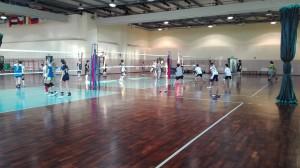 Festa Volley 2016 (54)