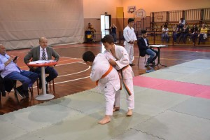 09giu16 - passaggi cintura judo (46)