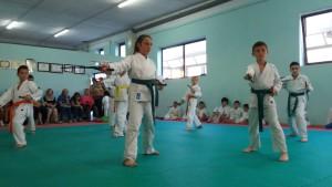 2016_06_15 - Karate passaggi cintura (13)