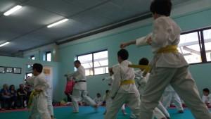 2016_06_15 - Karate passaggi cintura (8)