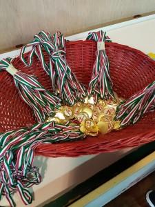 Basket - festa di fine anno (5)