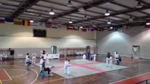 passaggi cintura judo 9giu16 (19)