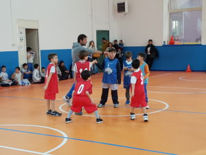 basket-under-10-billy-basket-cus-1
