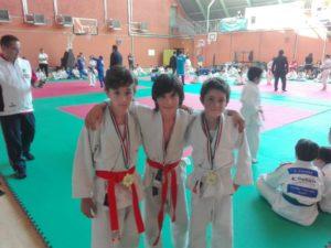 2017_04_09-palaveliero-judo-2