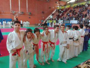 2017_04_09-palaveliero-judo-3