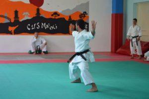 selezioni-cnu-karate-2018-5