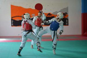 selezioni-cnu-taekwondo-16