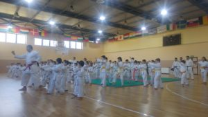 karate-sotto-lalbero-2018-10