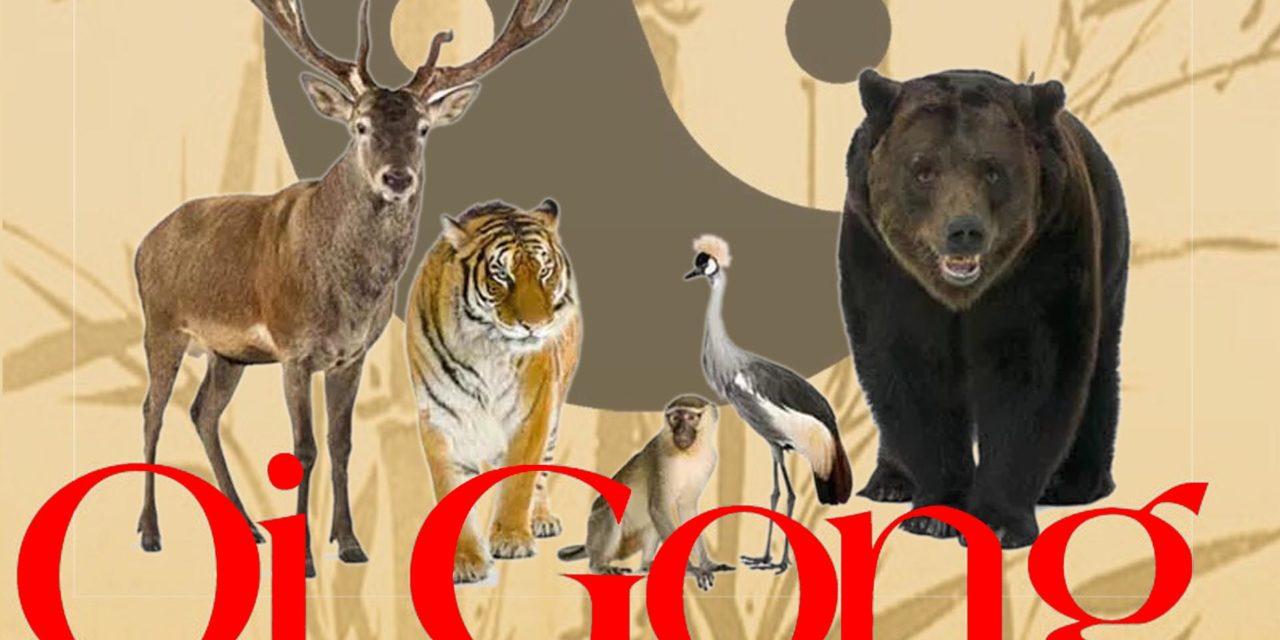 https://www.cusnapoli.it/new/wp-content/uploads/2020/03/qi-gong-dei-5-animali-2-1-e1583259910671-1280x640.jpg